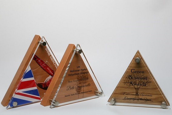Wood and Acrylic Pyramid Award