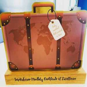 TripAdvisor Coloured Metal and Wood Custom Award