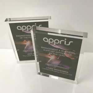 Appris Acrylic Oval Tombstone with Card Encapsulated Inside